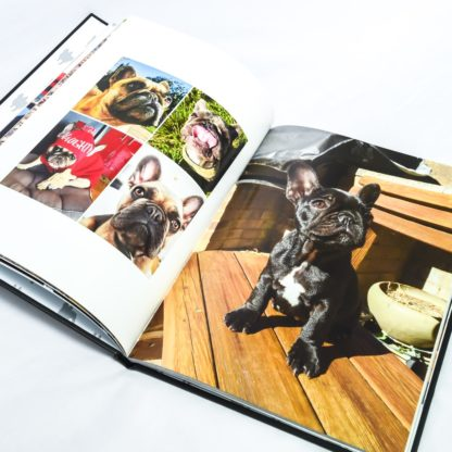 French Bulldog Coffee Table Book - White 4
