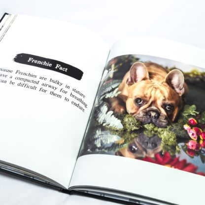 French Bulldog Coffee Table Book - White 5