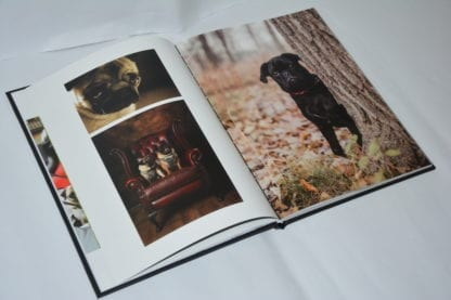 Pug Coffee Table Book - Image 10