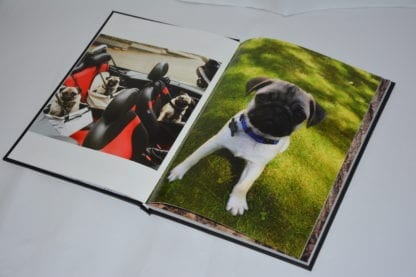Pug Coffee Table Book - Image 11