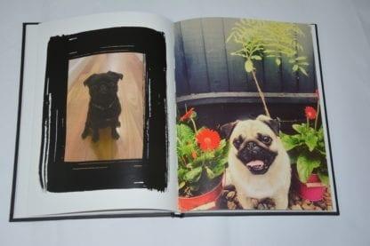 Pug Coffee Table Book - Image 4