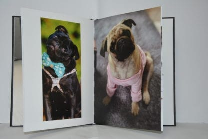 Pug Coffee Table Book - Image 5