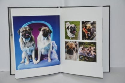 Pug Coffee Table Book - Image 7