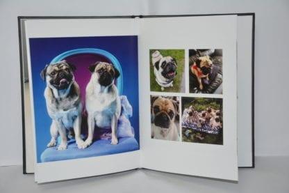 Pug Coffee Table Book - Image 7