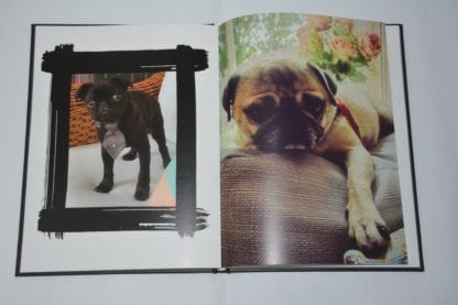 Pug Coffee Table Book - Image 9