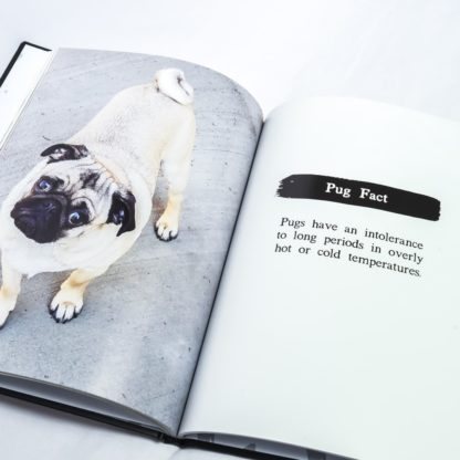 Pug Coffee Table Book - White 6