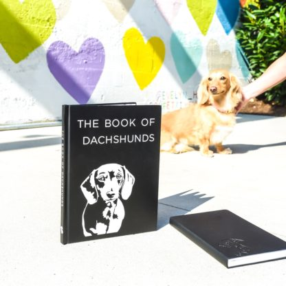 Dachshund books - colour 3