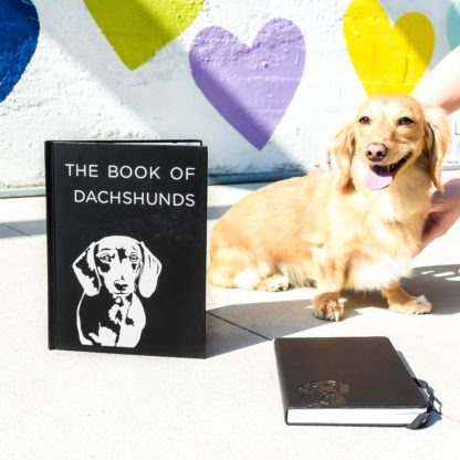 Dachshund books - colour 4