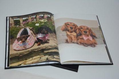 Dachshund coffee table book image 3