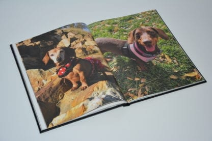 Dachshund coffee table book image 4