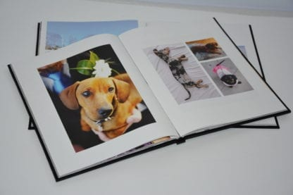Dachshund coffee table book image 5