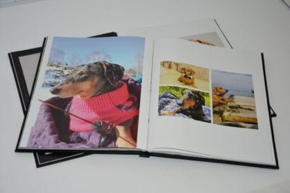Dachshund coffee table book image 6