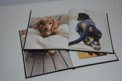 Dachshund coffee table book image 7