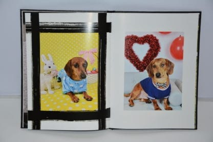 Dachshund coffee table book image 8