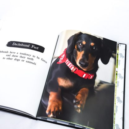 Dachshund coffee table book - white 5