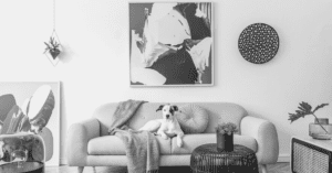 33 Chic, Modern, and Sophisticated Dog Decor Ideas For 2020