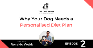 Why Your Dog Needs a Personalised Diet Plan with Renaldo Webb