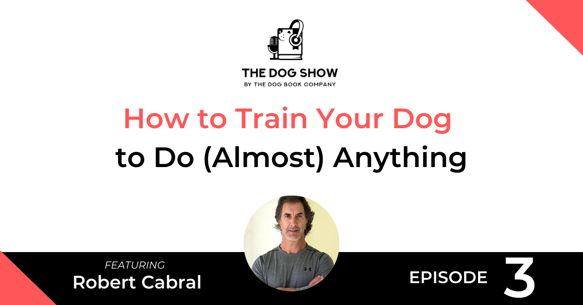 How to Train Your Dog to Do (Almost) Anything with Robert Cabral