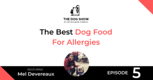 The Best Dog Food For Allergies