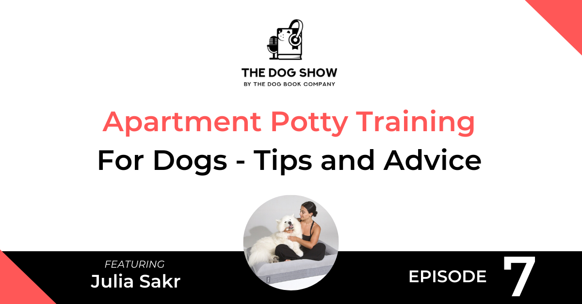 Apartment Potty Training for Dogs - Tips and Advice from Julia Sakr