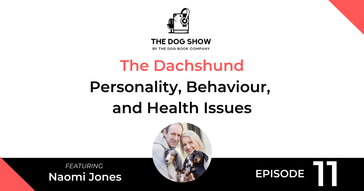 The Dachshund - Personality, Behaviour, and Health Issues