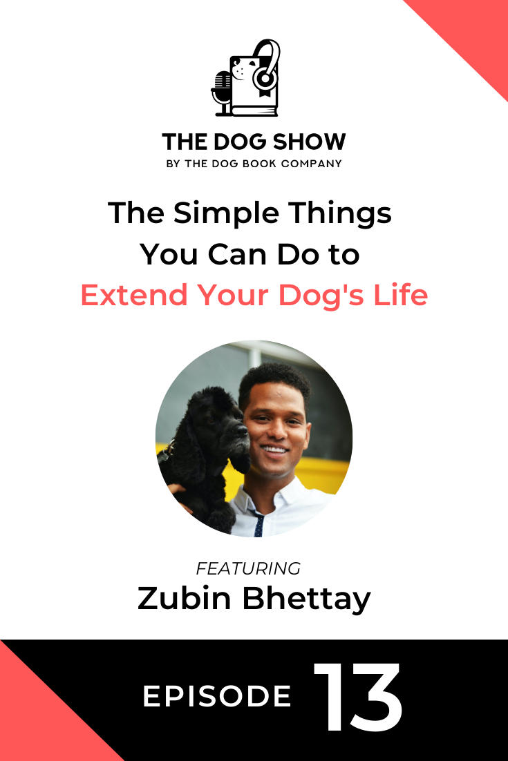 The Simple Things You Can Do to Extend Your Dog's Life with Zubin Bhettay (Episode 13)