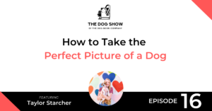 How to Take the Perfect Picture of a Dog with Taylor Starcher