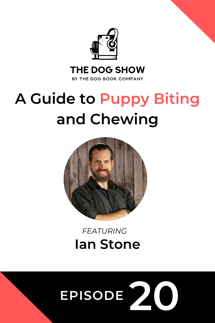 A Guide to Puppy Biting and Chewing with Ian Stone (Episode 20)