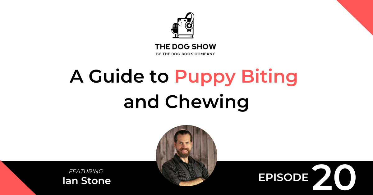 A Guide to Puppy Biting and Chewing with Ian Stone - Website_Facebook