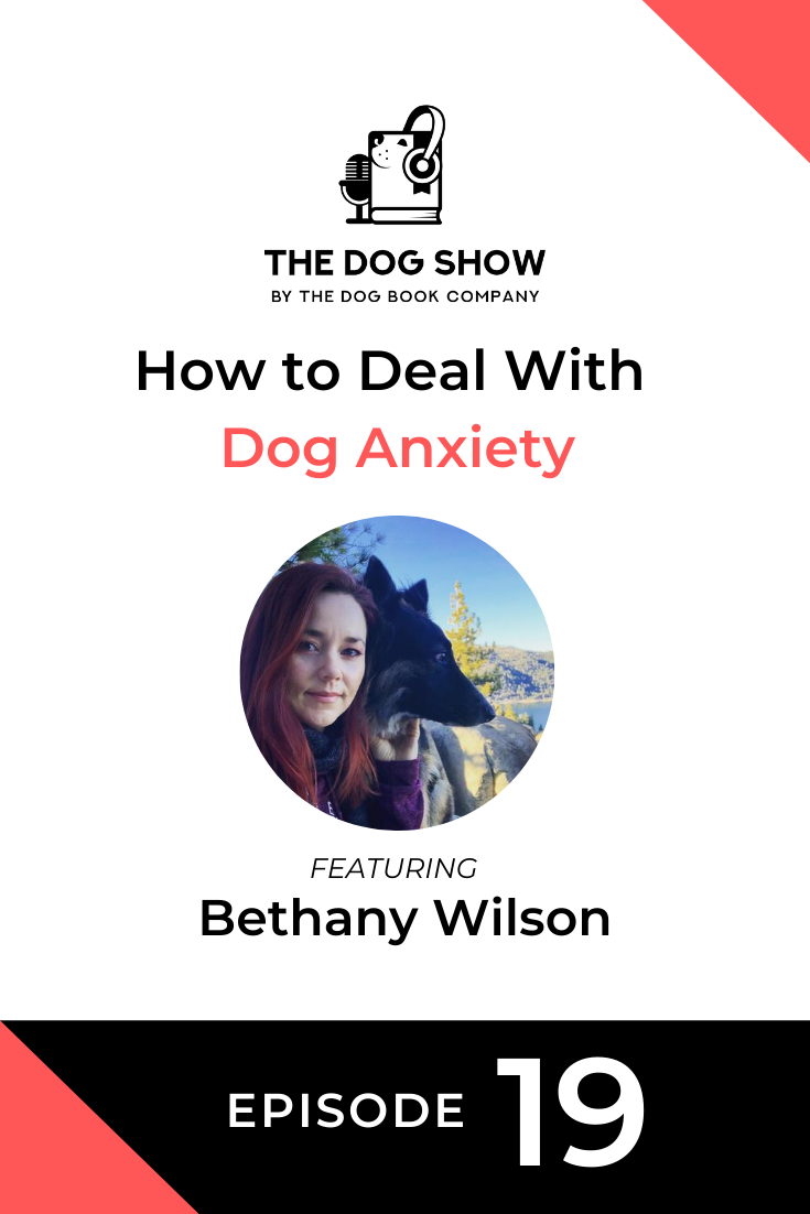 How to Deal With Dog Anxiety Featuring Bethany Wilson (Episode 19)