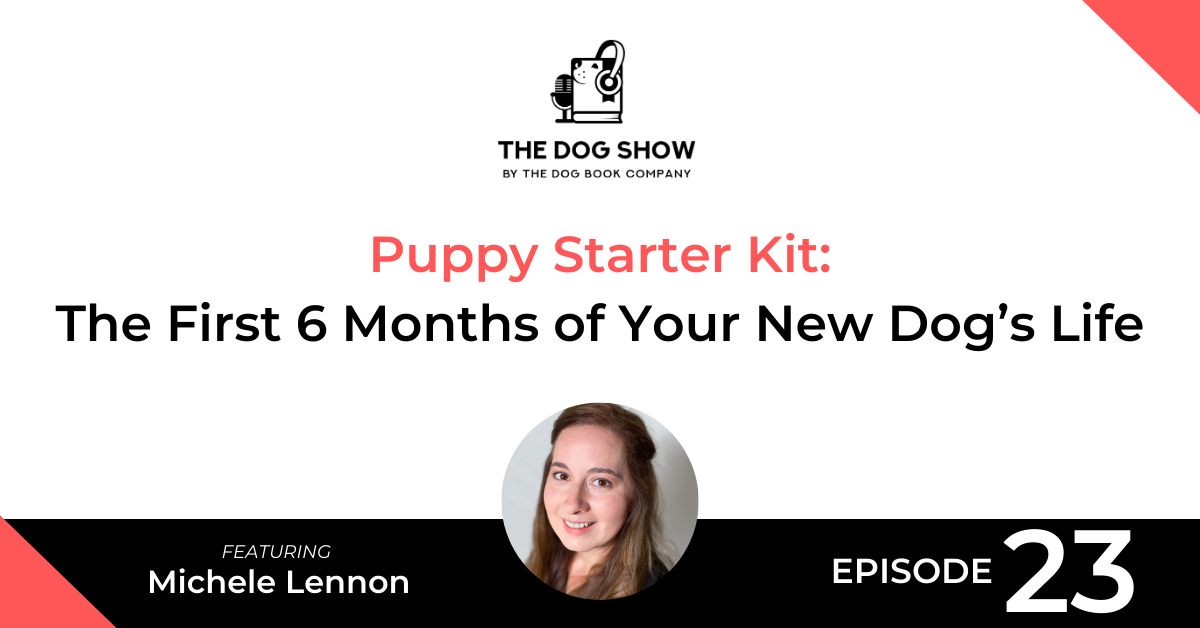 Puppy Starter Kit - How to Handle the First 6 Months of Your New Dog's Life