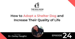 How to Adopt a Shelter Dog and Increase Their Quality of Life with Dr. Carley Faughn