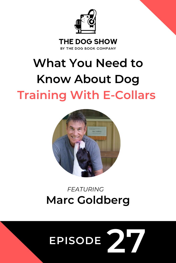 What You Need to Know About Dog Training With E-Collars Featuring Marc Goldberg (Episode 27)