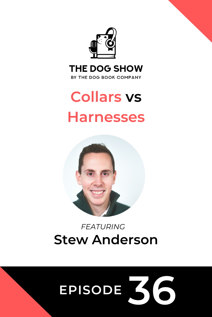 Collars vs Harnesses: A Discussion with Stew Anderson From Beast & Buckle (Episode 36)