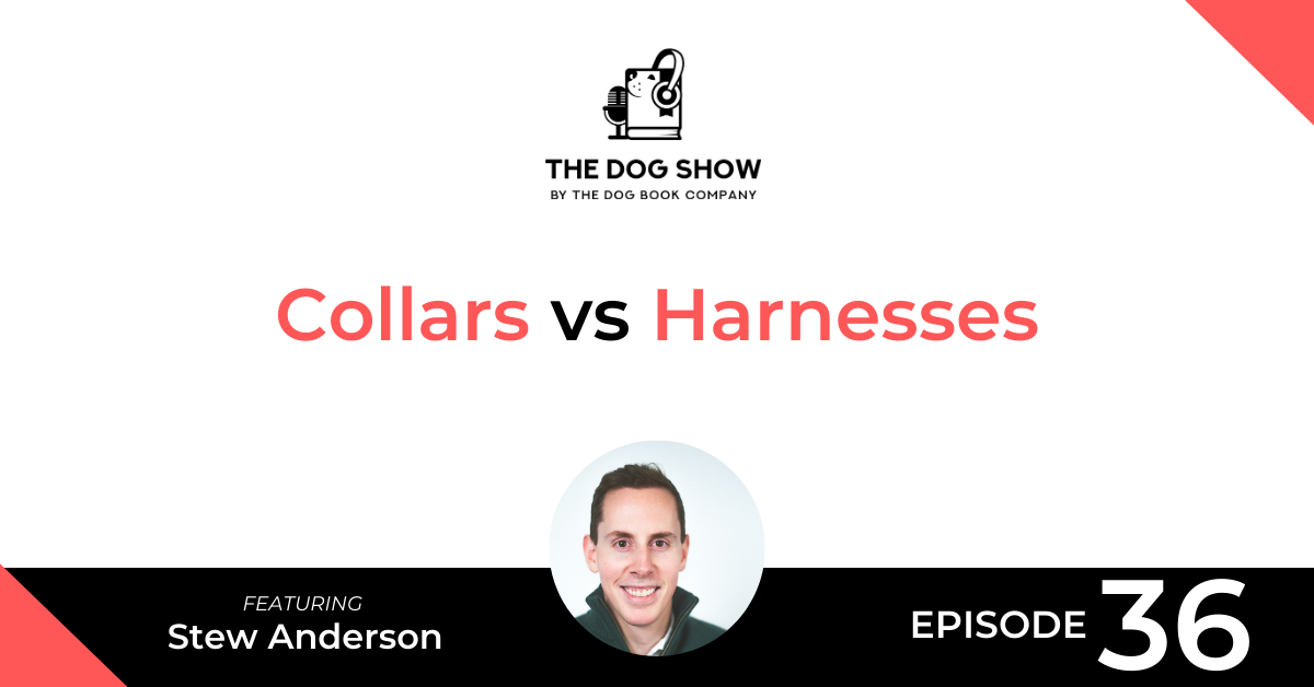 Collars vs Harnesses - A Discussion with Stew Anderson From Beast & Buckle