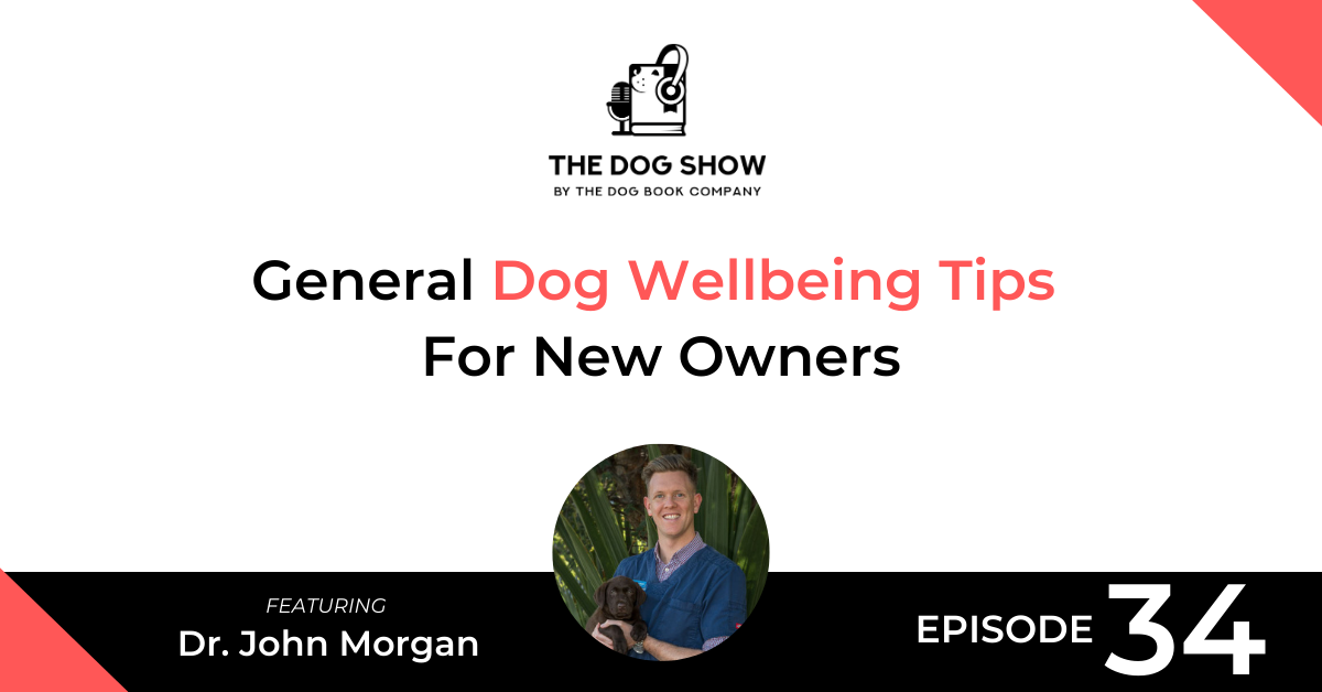 General Dog Wellbeing Tips For New Owners - Website_Facebook