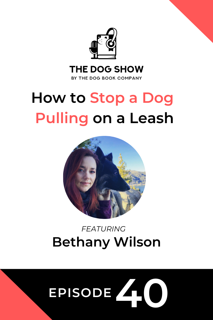 How to Stop a Dog Pulling on a Leash Featuring Bethany Wilson (Episode 40)