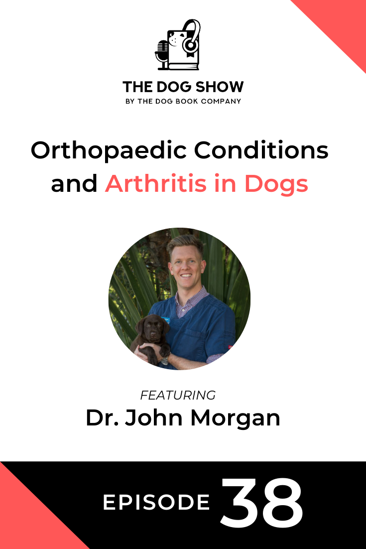 Orthopaedic Conditions and Arthritis in Dogs With Dr. John Morgan (Episode 38)