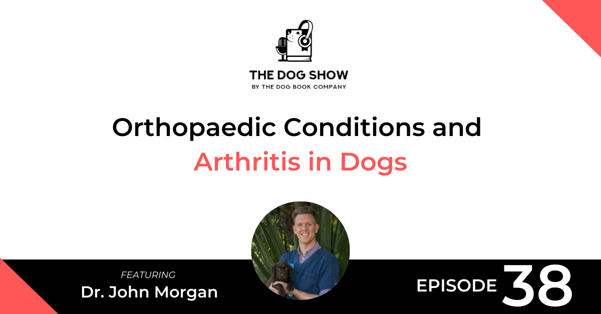 Orthopaedic Conditions and Arthritis in Dogs - Website_Facebook
