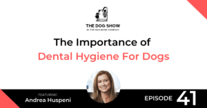 The Importance of Dental Hygiene For Dogs With Andrea Huspeni