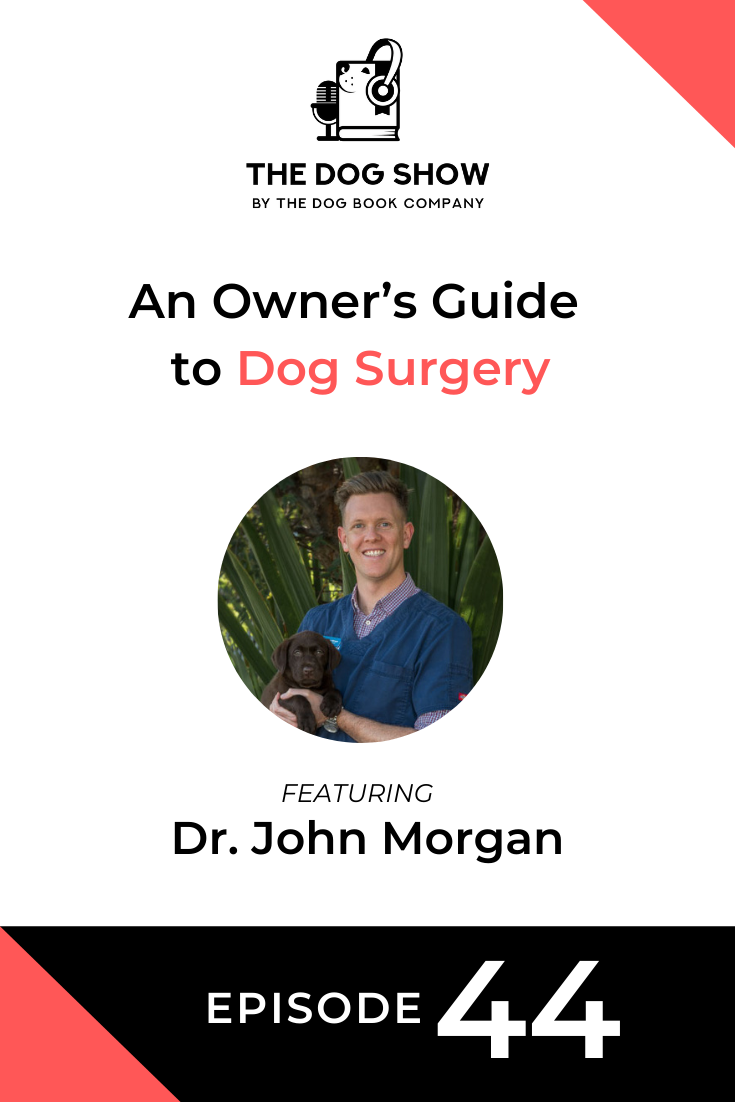 An Owner's Guide to Dog Surgery - Reasons, Risks, and Preparation Ft. Dr. John Morgan (Episode 44)