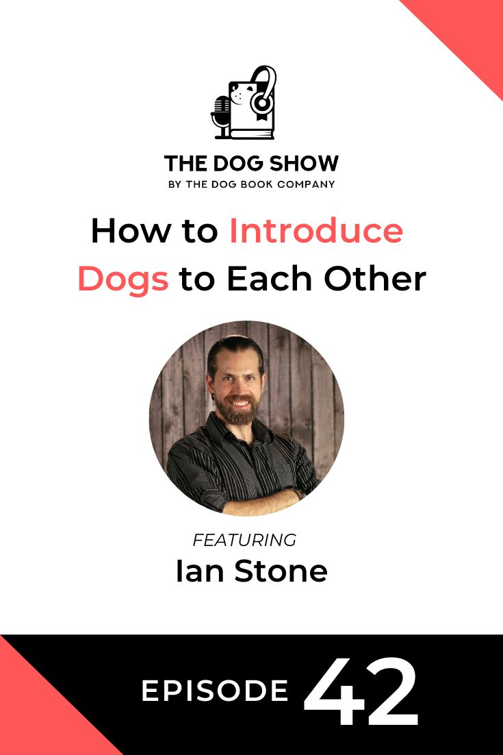 How to Introduce Dogs to Each Other with Ian Stone (Episode 42)