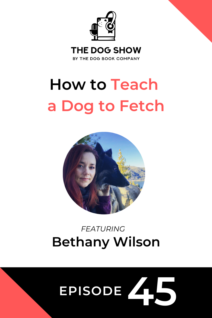 How to Teach a Dog to Fetch with Bethany Wilson (Episode 45)