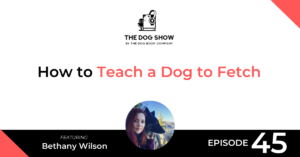 How to Teach a Dog to Fetch with Bethany Wilson - Website_Facebook
