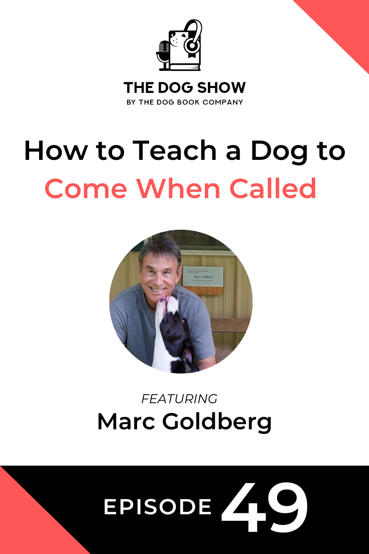 How to Teach a Dog to Come When Called Ft. Marc Goldberg (Episode 49)