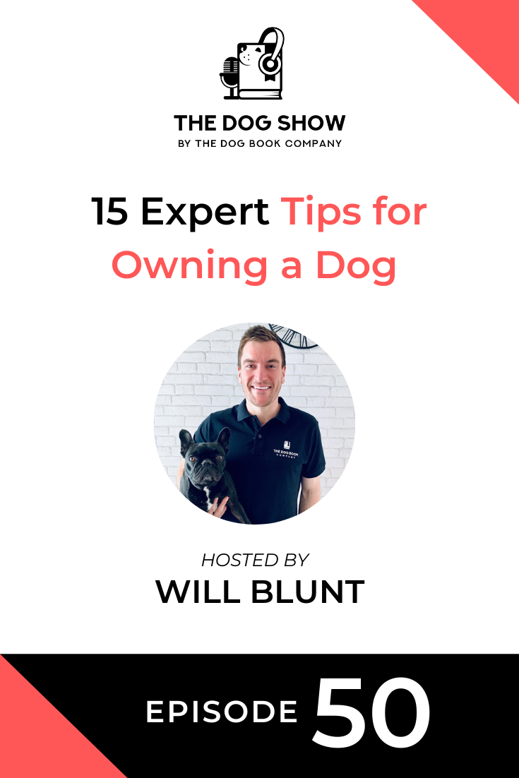 15 Expert Tips for Owning a Dog (Episode 50)