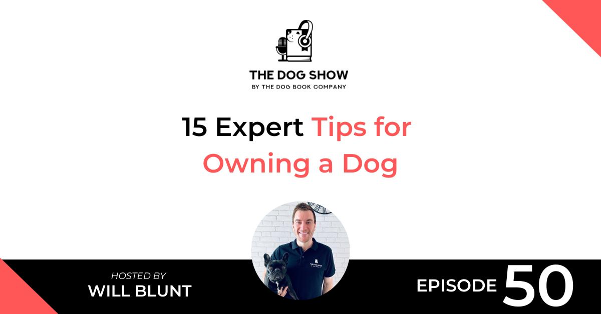 15 Expert Tips for Owning a Dog - WebsiteFacebook