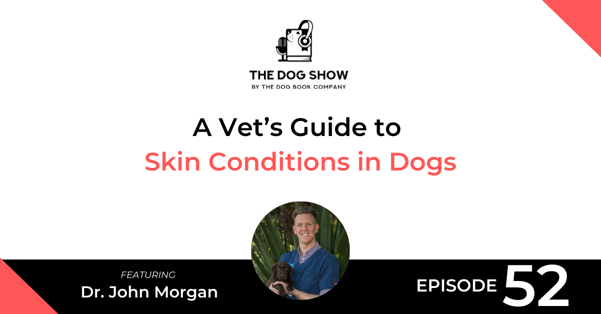 A Vet's Guide to Skin Conditions in Dogs Ft Dr. John Morgan