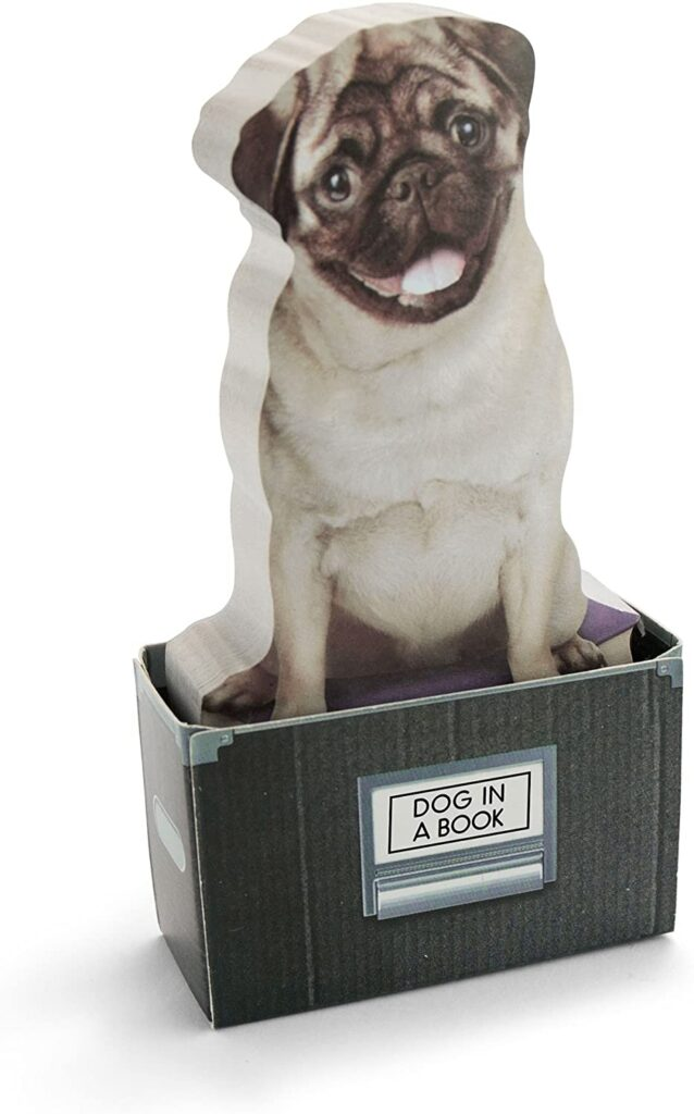 Mustard-Sticky-Post-Notes-Memo-Pad-Dog-In-A-Box