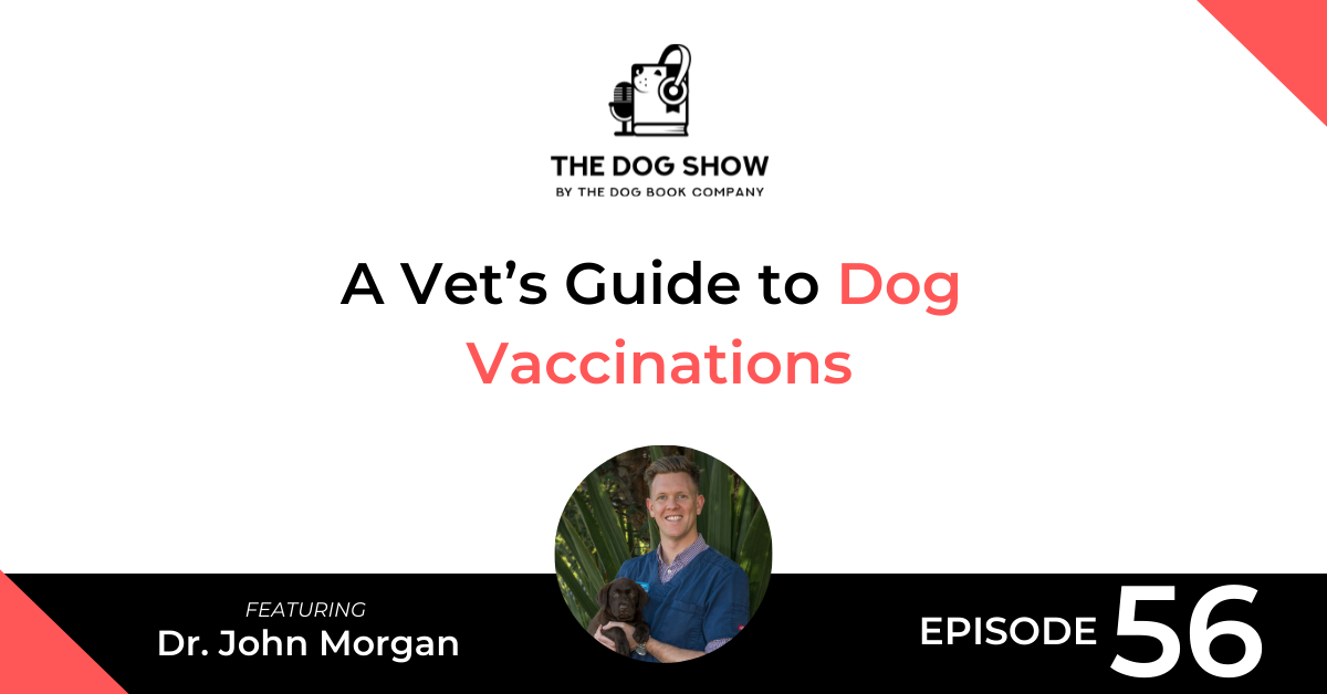 A Vet's Guide to Dog Vaccinations